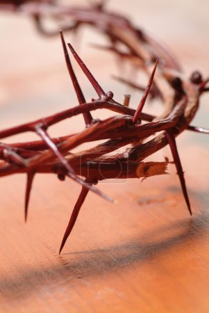 Photo for Crown of Thorns - Royalty Free Image