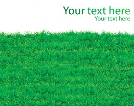 Illustration for Grass vector pattern background for poster - Royalty Free Image