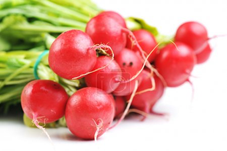 Photo for Bunch of red radish with leaves, isolated on white - Royalty Free Image