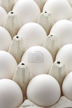 Photo for Collection of white chicken eggs in carton box. - Royalty Free Image