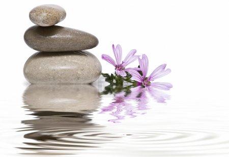 Photo pour Nature morte sur zen équilibre et spa . - image libre de droit