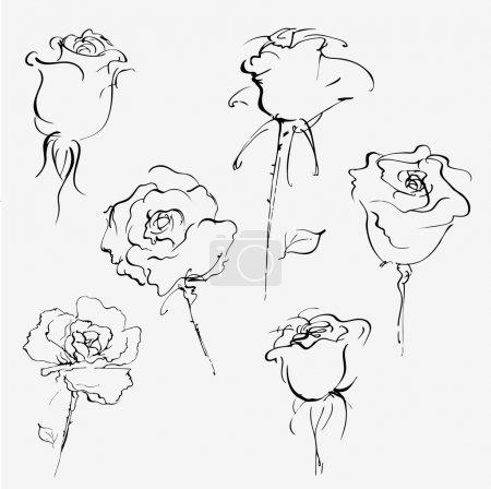 Illustration pour Croquis vectoriel dessiné à la main du bourgeon de roses sur blanc - image libre de droit