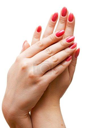 Photo pour Soins pour les mains de femme de sensualité - image libre de droit