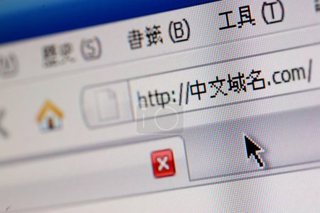 Chinese domain name
