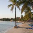 Early sunset at a sandy beach resort in Jamaica...