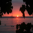 Colorful sunset from a beach in Jamaica....