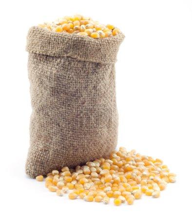 Small bag of corn