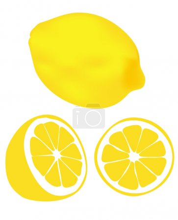 Illustration for Lemons on a white background - Royalty Free Image