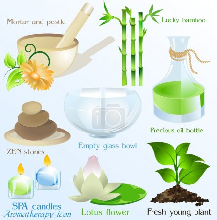 Spa icons and objects vector set
