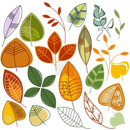 Illustration for A collection of hand drawn leaves in autumn colors - Royalty Free Image