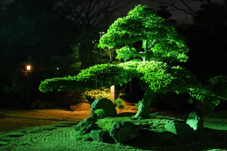Zen garden by night