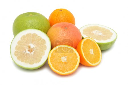 Group of citrus fruits, isolated
