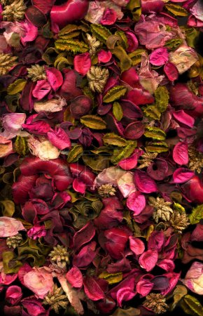 Dried flowers & Leaves background