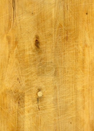 Photo for Rough scratched Pine wood texture - Royalty Free Image