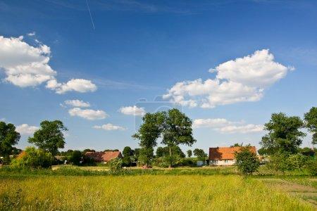 Village landscape