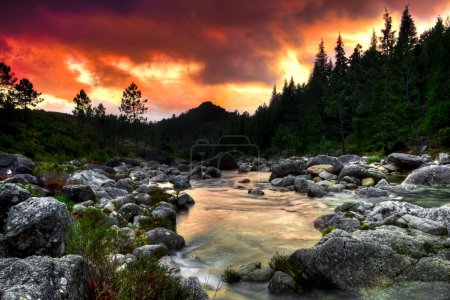 Photo for Beautiful view of a mountain river at sunset - Royalty Free Image