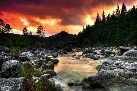 Photo pour Belle vue sur une rivière de montagne au coucher du soleil - image libre de droit