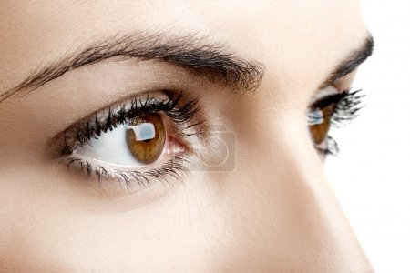 Photo for Close-up portrait of a beautiful female eyes - Royalty Free Image