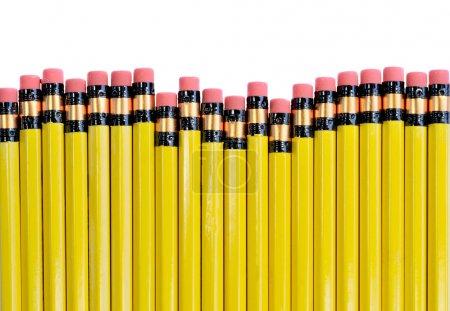 Photo pour Ligne de crayons jaunes isolés sur blanc - image libre de droit