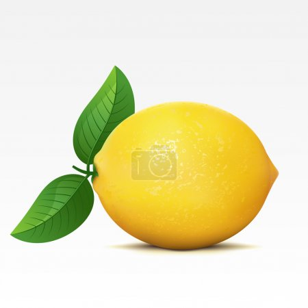 Illustration for Lemon on a white background - Royalty Free Image