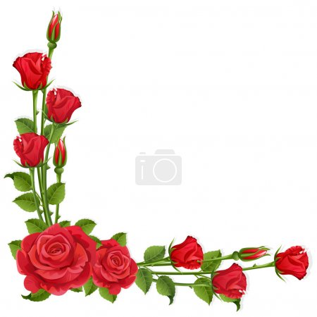 Illustration for White background with red roses - Royalty Free Image