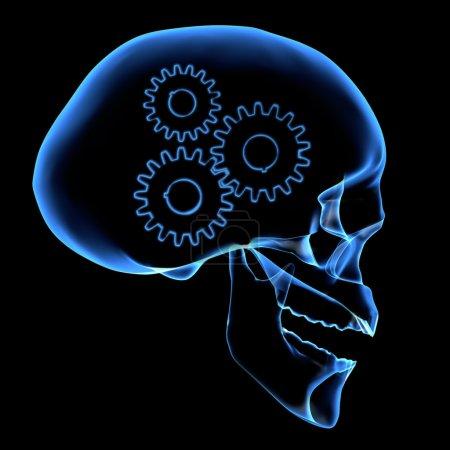 Photo pour Radiographie d'une tête - image libre de droit