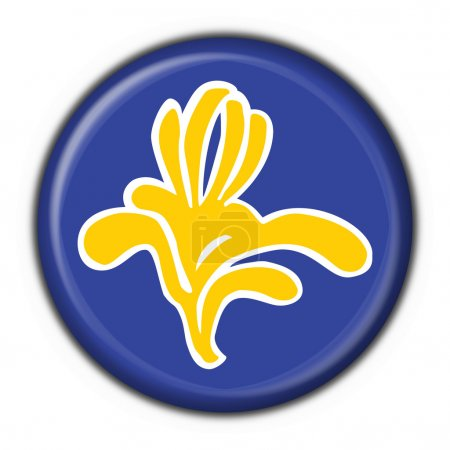 Flag of Brussels (Belgium) round shape
