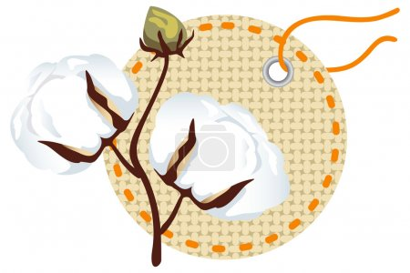 Illustration for Cotton branch with label (Gossypium). - Royalty Free Image