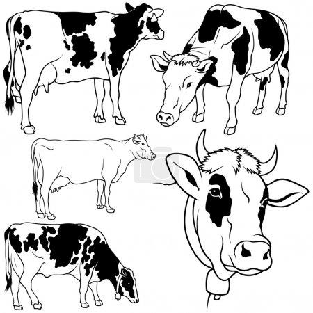 Illustration pour Collection Vache - illustration contour noir, vecteur - image libre de droit