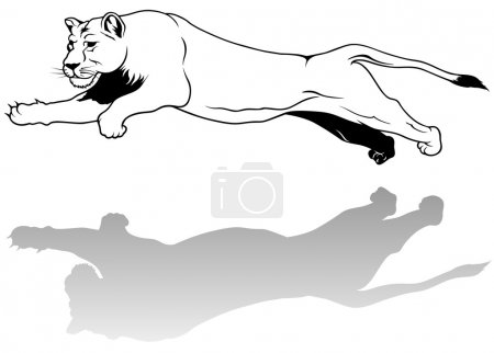Jumping Lioness