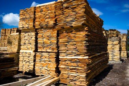 Photo pour Collection bois sur fond bleu ciel - image libre de droit