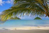 Mokulua islands off lanikai beach