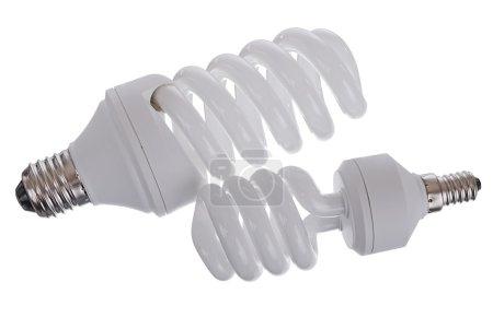 Photo pour Ampoules lumière du jour fluorescent (lampes) sur fond blanc - image libre de droit
