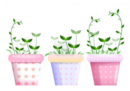 Flowerpots and leaf