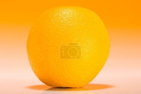Photo pour Orange sur fond dégradé orange - image libre de droit