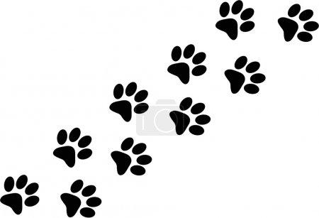 Illustration pour Paw trail isolé sur fond blanc - image libre de droit