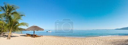 Photo for Tropical beach panorama with deckchairs, umbrellas, boats and palm tree - Royalty Free Image