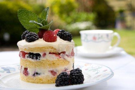 Photo pour Magnifiquement décoré de dessert servi en plein air sur une plaque dans le jardin - image libre de droit
