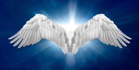 Angel Wings 2