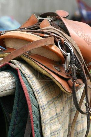 Saddle Up / Horse Equipment