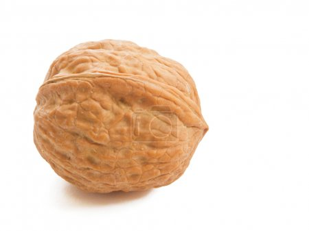 Walnut isolated on white.