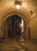 Alley by night. Giovinazzo. Apulia.