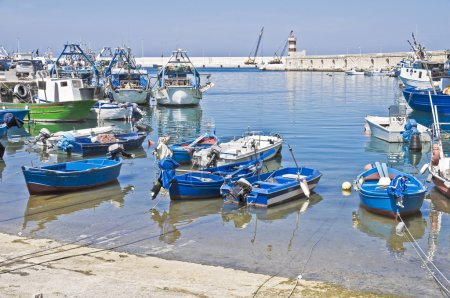 Boats moored at port. Monopoli. Apulia.