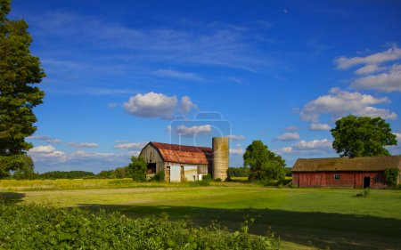 Photo for Early summer Ontario farm scene - Royalty Free Image