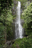 Cesta k vodopádu hana