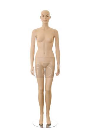 Female mannequin | Isolated