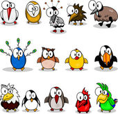 Cartoon birds (chicken eagle owl toucan penguin peacock  owl parrot woodpecker cardinal-bird ostrich crane stork kiwi eagle)