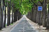 Egy ciklus lane