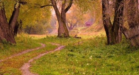 Photo pour Paysage d'automne : vieux arbres, s'étend loin dans la route, clôture cahoteuse. Au loin, la rivière et le pont. Temps sombre - image libre de droit