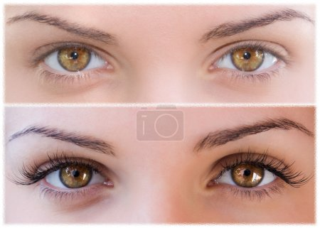 Photo for Natural and false eyelashes before and after - Royalty Free Image